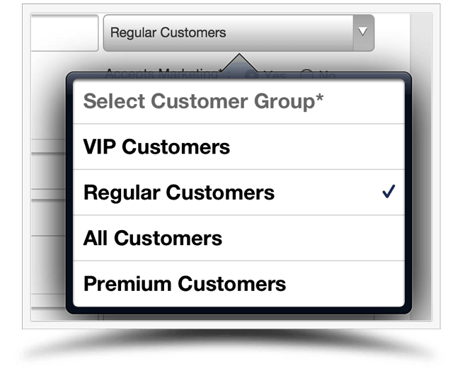Customer Groups